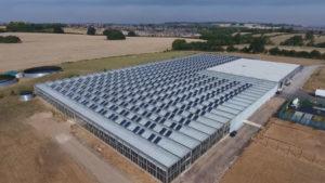 Beada-Moss-Solar-Panel-Installation