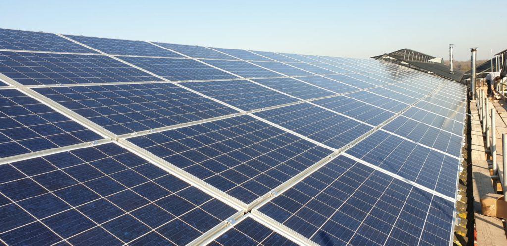 Bell Plantation Solar PV